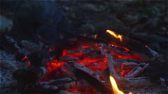 Fire and glow on the forest floor in the camp. Stock Footage