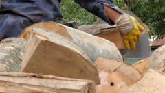 Man on the electric circular saw cutting logs, pile of firewood close up, 4K - stock footage