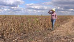 Female farmer walking in soy bean field Stock Footage