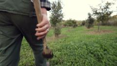 Truffle hunter walking with tool in the hand Stock Footage