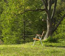 Folding chair standing under the spring ceiba tree on a hill, Maldonado, Urug - stock photo