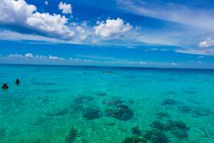 BAY OF PIGS, CUBA - SEPTEMBER 9, 2015:  Tourist attraction for swimming in Cu Stock Photos