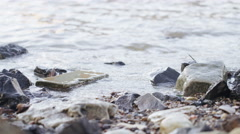 4K Tide coming in on the river bank, in slow motion Stock Footage