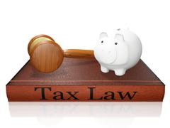 Tax Law Book Piggy Bank and Judge Gavel Piirros