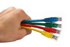 Hand Holding Four Multi Colored Network Cables Isolated Stock Photos