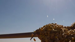 Hands Pouring Corn Kernerls in Slow Motion - stock footage