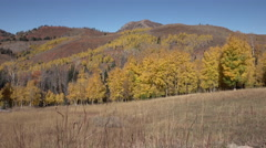 Autumn Wasatch Mountains Utah colorful landscape 4K Stock Footage