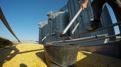 Farmer Taking Samples of Corn in Front of a Silo Stock Footage