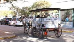Horse drawn buggy in Savannah, Georgia historic downtown Stock Footage