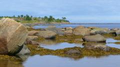 Northern White Sea in Karelia, Russia Stock Footage