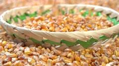 Corn grain poured. Slow motion 240 fps. - stock footage