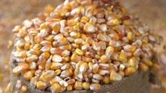 Corn grain falling down from jute bags. Slow motion 240 fps. - stock footage