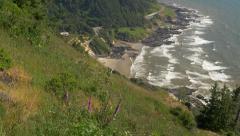 Stock Video Footage of Oregon Coast from Cape Perpetua (tilt)