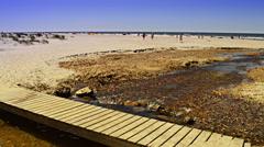 Wooden bridge and river on danish beach Stock Footage