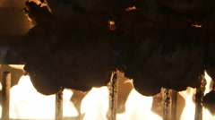 Rotisserie Chickens Roasting Over Open Fire Close Up, 4K Stock Footage