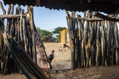 View from a Wayuu hut Stock Photos
