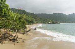 Waves crashing on secluded Caribbean jungle beach. - stock photo