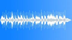 The Denisovans - stock music