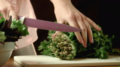 Cutting of cilantro - stock footage
