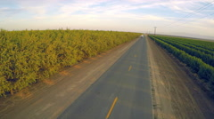 An aerial view over a truck passing over almond orchards. Stock Footage