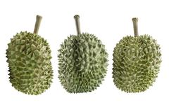 Durians durian isolated on white background - stock photo