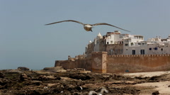 Historical Essaouira city near Atlantic Ocean in Morocco Stock Footage