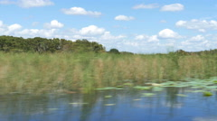 Stock Video Footage of Airboat Ride in Wetland with Marsh Grass and Blue Skies, 4K
