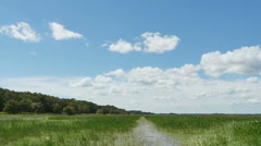 Stock Video Footage of Airboat Ride in Wetland with Marsh Grass and Blue Skies in Slow Motion