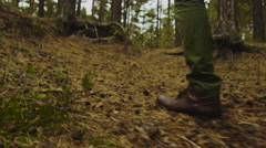 Hiker in close-up slow motion leg shot walks uphill in the forest in autumn Stock Footage