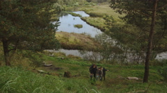 Group of people are climbing up a hill in a forest with a lake in the background - stock footage