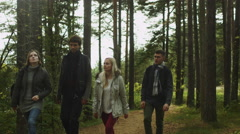 Group of young adult friends are walking in a beautiful autumn forest - stock footage