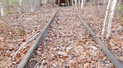 Wagon on the narrow-gauge railway. Russia. 1280x720 - stock footage