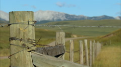 Foothills and Rocky Mountains - stock footage