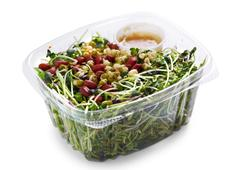 Micro greens salad. Stock Photos