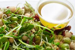 Micro greens salad. - stock photo