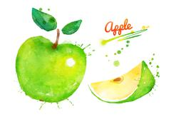 Stock Illustration of Green apple with paint splashes.