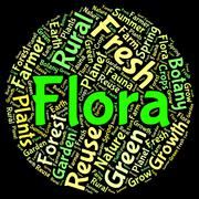 Flora Word Represents Plant Life And Area - stock illustration