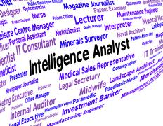 Intelligence Analyst Indicates Intellectual Capacity And Ability - stock illustration
