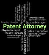 Patent Attorney Represents Legal Representative And Qc Piirros