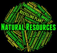 Environmental Impact Means Assessment Effect And Words Piirros