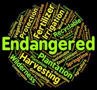 Endangered Word Means Facing Extinction And Endangering - stock illustration