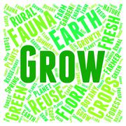 Stock Illustration of Words Grow Represents Cultivate Cultivation And Cultivates