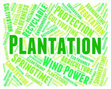 Plantation Word Means Agriculture Ranch And Hacienda - stock illustration