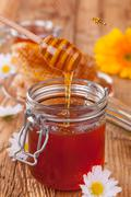 Fresh honey with dipper Stock Photos