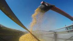 Combine Unloads Grainfeed Corn into a Farm Truck - stock footage