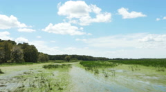 Airboat Ride in Wetland with Marsh Grass and Blue Skies, 4K Stock Footage