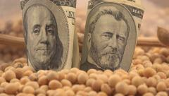 Profit from soybean growth and harvest in USA Stock Footage