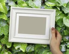Wooden frame in woman hands on the background of green foliage - stock photo