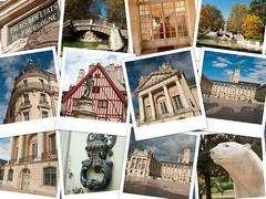 City of Dijon    collage Stock Photos