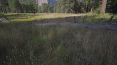 Granite spires in Yosemite Valley Stock Footage